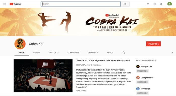 구글의 최신 유튜브 오리지널 콘텐츠인 코브라 카이