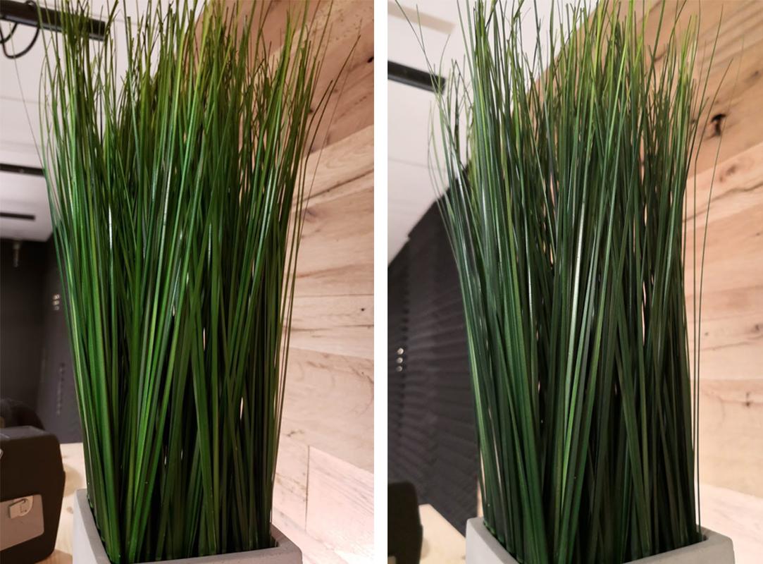 메이트 10 프로(오른쪽)가 갤럭시 노트9(왼쪽)보다 풀의 가닥을 더 세밀하게 표현했다.(클릭해서 원본확인 가능)